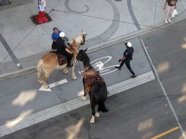 Vancouver Police on Horses 21