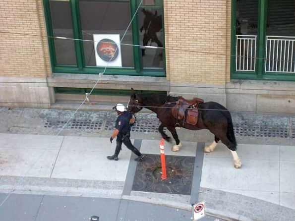 Vancouver Police on Horses 24