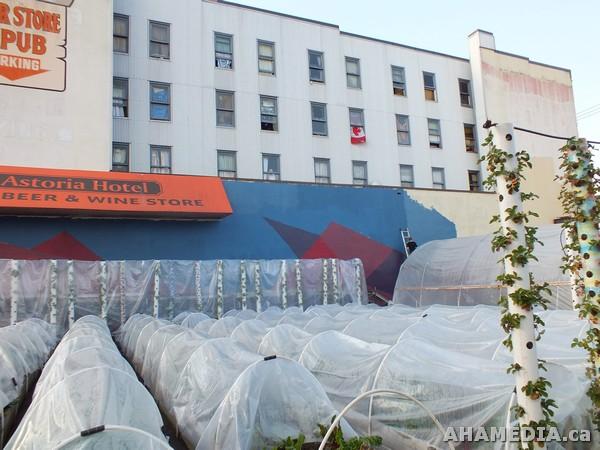 97 Aha Media Films W2 Soul Garden Mural In Vancouver Downtown Eastside Dtes Aha Media