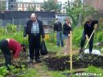 11 AHA MEDIA sees Hastings Folk Garden in Vancouver Downtown Eastside(DTES)