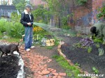 28 AHA MEDIA sees Hastings Folk Garden in Vancouver Downtown Eastside (DTES)