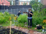 30 AHA MEDIA sees Hastings Folk Garden in Vancouver Downtown Eastside (DTES)