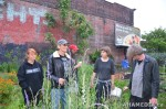 35 AHA MEDIA sees new Bee Hive for Hastings Folk Garden in Vancouver Downtown Eastside (DTES)
