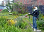 6 AHA MEDIA sees Hastings Folk Garden in Vancouver Downtown Eastside(DTES)