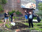 7 AHA MEDIA sees Hastings Folk Garden in Vancouver Downtown Eastside (DTES)