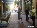 10 AHA MEDIA sees attempted dognapping in Vancouver