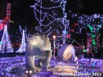 16 AHA MEDIA at Bright Nights - Stanley Park Christmas Train 2012 in Vancouver