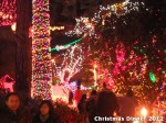30 AHA MEDIA at Bright Nights - Stanley Park Christmas Train 2012 in Vancouver
