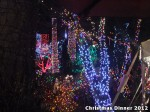43 AHA MEDIA at Bright Nights - Stanley Park Christmas Train 2012 in Vancouver