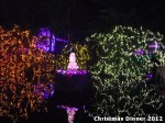 57 AHA MEDIA at Bright Nights - Stanley Park Christmas Train 2012 in Vancouver