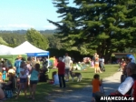 42 AHA MEDIA at Summerfest in Grimston Park 2013