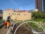 138 AHA MEDIA sees Woodwards Community Garden in Vancouver