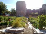 91 AHA MEDIA sees Woodwards Community Garden in Vancouver