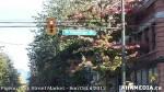 3 AHA MEDIA at Pigeon Park Street Market Sun Sept 29 2013 in VancouverDTES