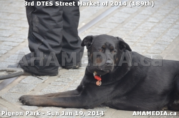 51 AHA MEDIA sees DTES Street Market on Sun Jan 19, 2014