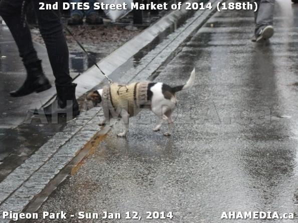 96 AHA MEDIA sees DTES Street Market on Sun Jan 12, 2014