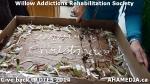 30 AHA MEDIA at Willow Addictions Rehabilitation Society giving back to theDTES
