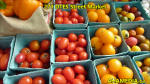 1 AHA MEDIA sees 271st DTES Street Market in Vancouver on Aug 16 2015 (6)