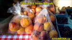 1 275th DTES Street Market in Vancouver on Aug 13 2015 (25)