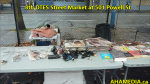 1 8th DTES Street Market at 501 Powell St in Vancouver on Sept 19 2015 (9)