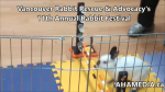 1 AHA MEDIA at 11th Annual Rabbit Festival by Vancouver Rabbit Rescue & Advocacy (16)