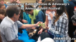 1 AHA MEDIA at 11th Annual Rabbit Festival by Vancouver Rabbit Rescue & Advocacy (18)