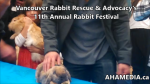 1 AHA MEDIA at 11th Annual Rabbit Festival by Vancouver Rabbit Rescue & Advocacy (20)