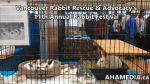 1 AHA MEDIA at 11th Annual Rabbit Festival by Vancouver Rabbit Rescue & Advocacy (24)