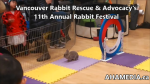 1 AHA MEDIA at 11th Annual Rabbit Festival by Vancouver Rabbit Rescue & Advocacy (27)
