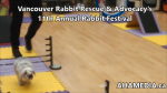 1 AHA MEDIA at 11th Annual Rabbit Festival by Vancouver Rabbit Rescue & Advocacy (3)