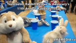 1 AHA MEDIA at 11th Annual Rabbit Festival by Vancouver Rabbit Rescue & Advocacy (9)