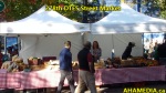 1 AHA MEDIA at 278th DTES Street Market in Vancouver on Oct 4, 2015(3)