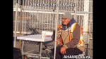 1 AHA MEDIA at 18th DTES Street Market at 501 Powell St in Vancouver on Nov 28 2015 (67)