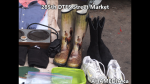1 AHA MEDIA at 285th DTES Street Market in Vancouver on Nov 22, 2015  (56)