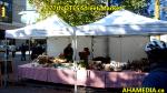 012 (3) AHA MEDIA at 2015 Highlights of DTES Street Market inVancouver