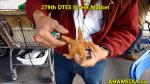 013 (3) AHA MEDIA at 2015 Highlights of DTES Street Market inVancouver