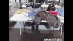 1 AHA MEDIA at 20th DTES Street Market at 501 Powell St in Vancouver on Dec 12 2015 (56)