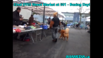 1 AHA MEDIA at Boxing Day -22nd DTES Street Market at 501 Powell St on  on Dec 26 2015 (4)