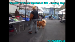 1 AHA MEDIA at Boxing Day -22nd DTES Street Market at 501 Powell St on  on Dec 26 2015 (7)