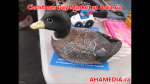 1  AHA MEDIA at Christmas Day 2015 at DTES Street Market Area 62 in Vancouver on Dec 25 2015 (52)