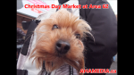 1  AHA MEDIA at Christmas Day 2015 at DTES Street Market Area 62 in Vancouver on Dec 25 2015 (58)