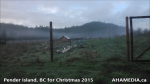 1 AHA MEDIA at Pender Island, BC for Christmas 2015 (11)