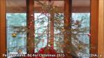 1 AHA MEDIA at Pender Island, BC for Christmas 2015(3)
