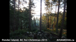 1 AHA MEDIA at Pender Island, BC for Christmas 2015 (30)