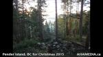 1 AHA MEDIA at Pender Island, BC for Christmas 2015(34)