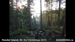 1 AHA MEDIA at Pender Island, BC for Christmas 2015 (34)