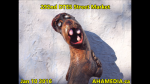 1 AHA MEDIA at 292nd DTES Street Market in Vancouver on Jan 10 2016 (42)