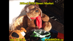 1 AHA MEDIA at 292nd DTES Street Market in Vancouver on Jan 10 2016 (83)