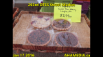 1 AHA MEDIA at 293rd DTES Street Market in Vancouver on Jan 17 2016 (40)