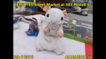 1 AHA MEDIA at 28th DTES Street Market at 501 Powell St in Vancouver on Feb 6 2016(39)
